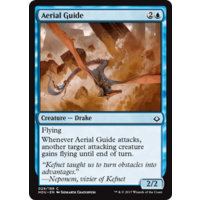 Aerial Guide FOIL