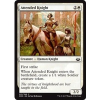 Attended Knight FOIL