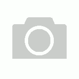 Dragon Shield Turquoise - Box 100
